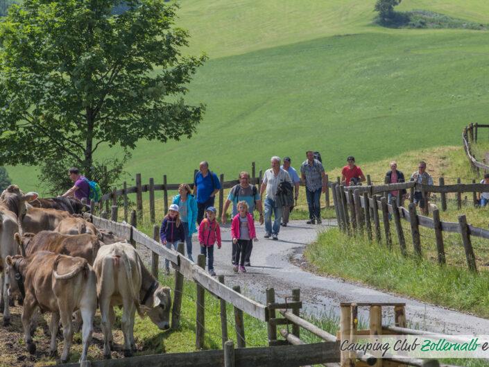 Wanderwochenende in Lechbruck
